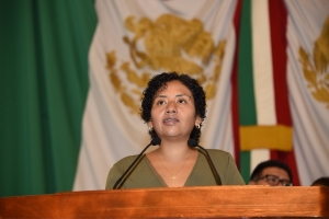 ALDF pide verificar establecimientos mercantiles por posibles violaciones a Ley de fumadores: Beatriz Olivares