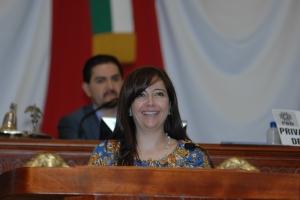 SOLICITARÁN A SEDUVI MANTENER SUSPENSIÓN DE LA NORMA 26