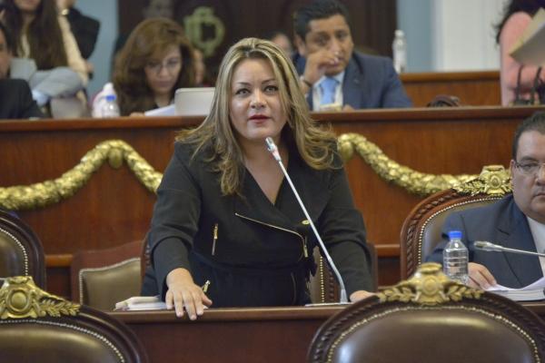 Que Senado pida la comparecencia de Luis Videgaray: Elizabeth Mateos