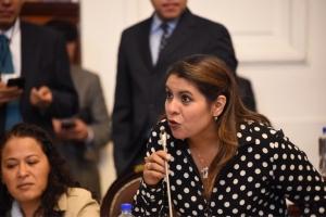 Pide diputada Penélope Campos ampliar calendarios para que dependencias  locales comprometan recursos en obra pública