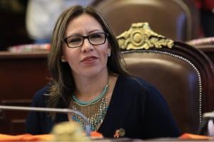 Residuos sólidos deben usarse para generar viviendas sustentables: Wendy González