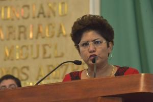 Un fracaso, aplicación de alerta de violencia de género en Edomex: Nury Ruiz