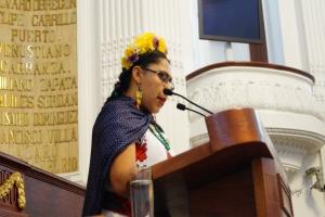 Mayor atención a las denuncias de la población para abatir inseguridad en Xochimilco: PVEM